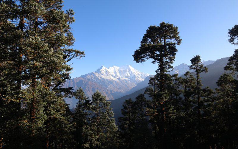 Nepal trek langtang